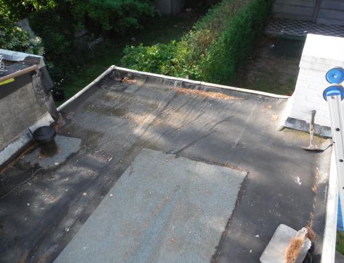 Platte daken Antwerpen 02 Voor